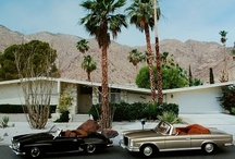 I <3 Palm Springs / by Julie Hackett