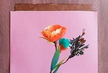 DECO /// Styling & Such / by Martine van Straelen