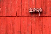 COLOR /// Red hot / by Martine van Straelen