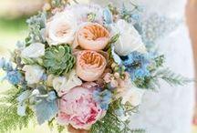 Get married.  / by Gwen Cummings