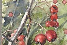 Red 3: Earthy Red / by Alisa Kensey
