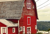 BarnAppeal / My never ending fascination with barns.  / by Deb VanNuil