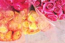 Flowers and Arrangements / by Mona Shakibai