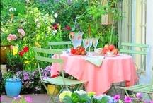 Garden Joys / by Sonia Soma