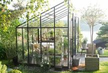 MY Gorgeous Greenhouses / by Stephanie Stiavetti @ The Culinary Life
