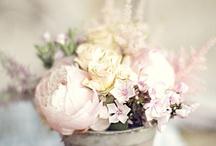 Flower Arrangements / by Mrs. Gore