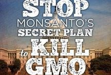 Learn About GMO Harm / by Joan Shields aka HOG HealthyOrganicGreen