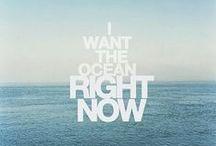 1 Ocean / by One Ocean Resort & Spa