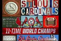 Cardinal Nation / by Stacey C