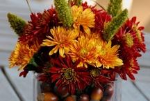 Fall/Thanksgiving / by Jessica Delgado