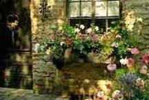 Cottage Charm / by Fleur Jardin