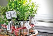 Vegan Garden / Garden tips and ideas for gardening the vegan, organic way.  http://www.theveganwoman.com/category/home-and-garden/ / by The Vegan Woman
