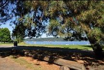 """Time for a Picnic! / What's in your picnic basket?  And once you're packed and ready, where do you go?  Here are our picks for picnic """"must haves"""", plus favorite spots around the Puget Sound to spread out a picnic blanket and enjoy a classic summer activity! / by Today's Warm 106.9"""