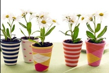 Home - Plant pots / by Sarah Hunt