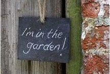 I'm in the Garden / by Annonja Oosten-Feenstra