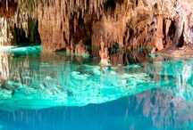 Cenotes / by Aida Lopez Fortier