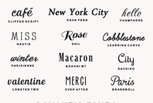 Typography / by Stephanie Hayward