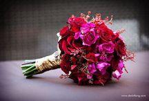 Inspiration : Fuchsia & Magenta / by Embellishmint Floral + Event Design Studio