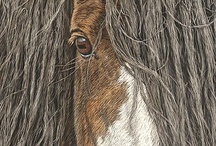 Artist Judy Larson / Beautiful animal renditions / by Jacqueline Brown