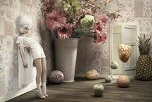 Wonderland / by annamarienyman