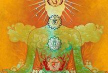 Meditation / by Katharine Doerksen