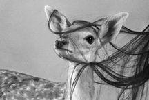 Animals / by Jenny Robinson