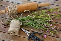 Garden ideas from my favorite bloggers! / by Rita Reade