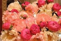 i <3 flowers / by Tiffany Alexander