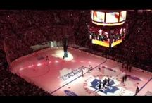 Leafs 2013 Playoffs / by Toronto MapleLeafs
