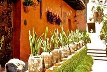 Landscaping and Curb Appeal / Ideas, inspiration and just pretty / by MIMS .