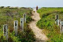 Texas: Galveston / Trip planning underway! / by Kristine Maurer