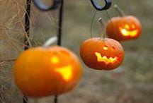 Halloween / by Nikki DeGard