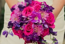 Wedding Bouquets & Flowers / by Tasha Conrad