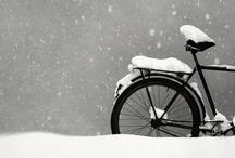 Winter / by The Bearded Iris
