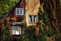The Kari Dream House(s) / by KariAnn Biles