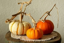 Fall: My Favorite Season / by KariAnn Biles
