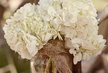 Wedding Ideas / by Brandi Howard