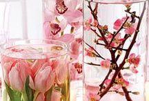 Flowers / by Ashlie Saili