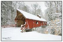 My Michigan / by Christine Dowd