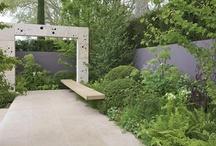 Garden / by somsoleil