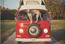 WISHLIST / by Heather Kneisler (A Sweet Simple Life)