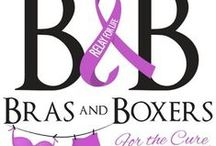 Join The Fight / Event to fundraise for the American Cancer Society / by Dazzle Paws