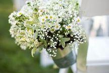 wedding ideas / by Stephanie Stinebower