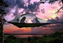 Camping / Camping lifestyle / by Soyable