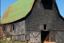 Barns Barns Barns / by Jennie Loberg