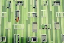 GREEN / by bert pieters