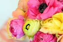 Flowers / by Liss Ortiz