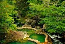 Costa Rica / by Lynn Stallworth