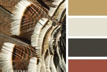 Colour themes / by Simone Vloet