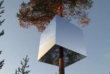 Gimme Shelter / Cabins, pods, sheds / by Celeste Moure